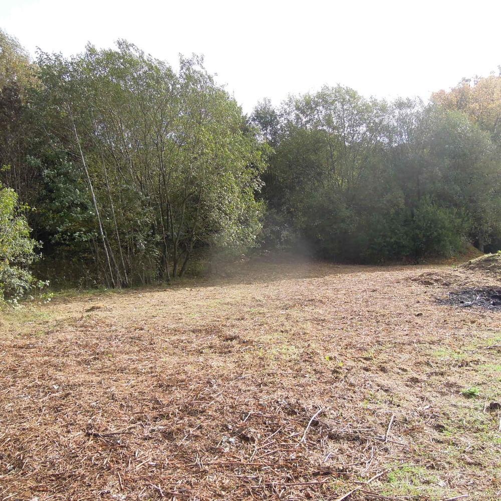 Terrain avec terrain constructible et 2 étangs et chalet à vendre